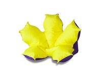 Цветок желто фиолетовый