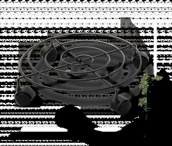 Пальмина 3