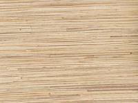 Стеновая панель 150/305 см, тростник
